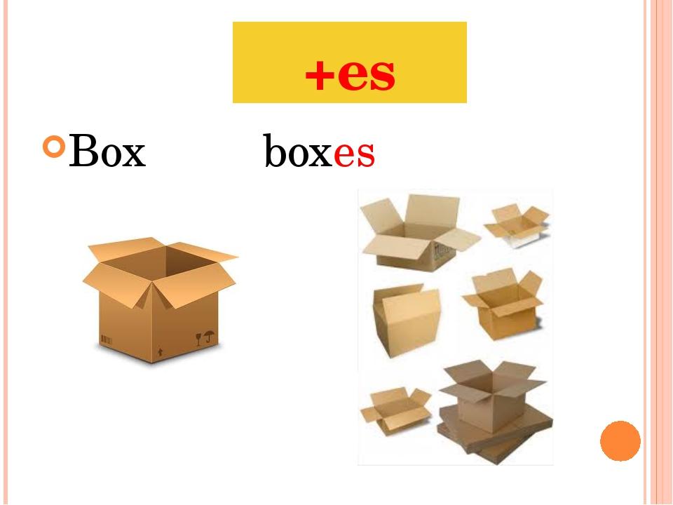 Boxboxes +es