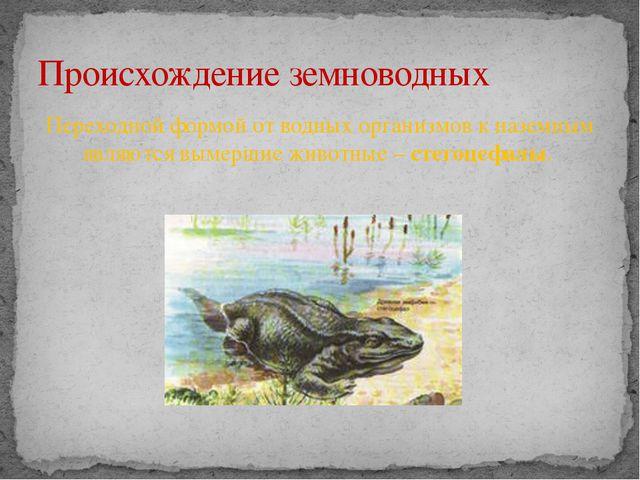 Переходной формой от водных организмов к наземным являются вымершие животные...