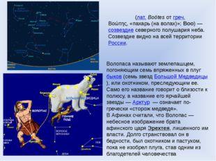 Волопа́с (лат.Boötes от греч. Βοώτης, «пахарь (на волах)»; Boo)— созвездие