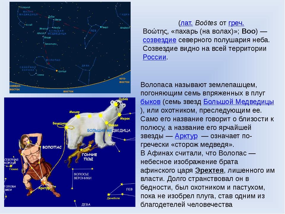 Волопа́с (лат.Boötes от греч. Βοώτης, «пахарь (на волах)»; Boo)— созвездие...