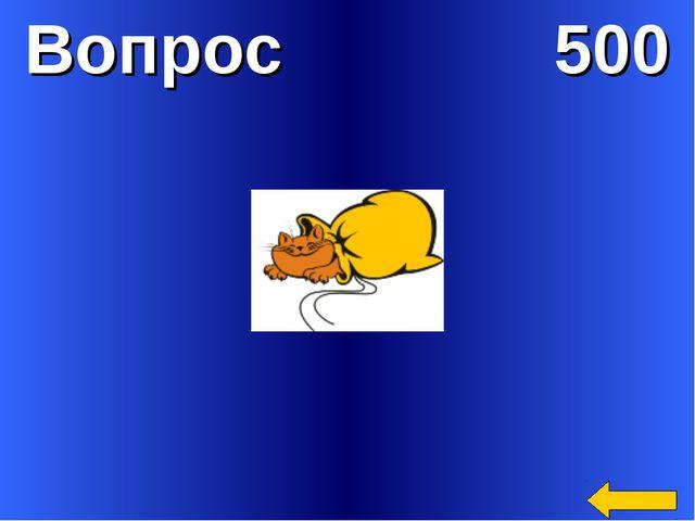 Вопрос 500