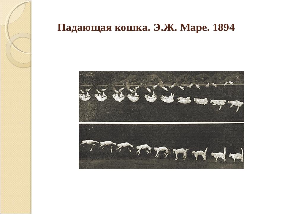 Падающая кошка. Э.Ж. Маре. 1894