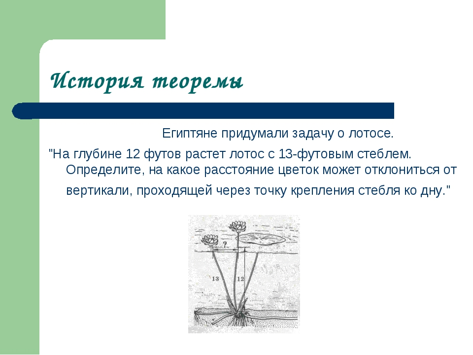 """История теоремы Египтяне придумали задачу о лотосе. """"На глубине 12 футов ра..."""