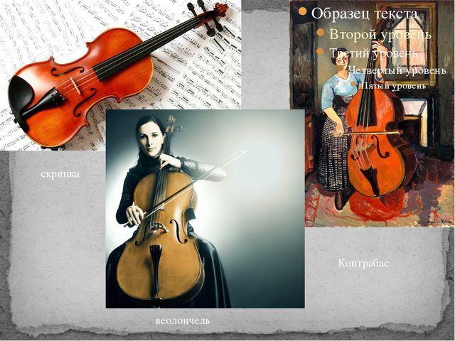 Контрабас веолончель скрипка
