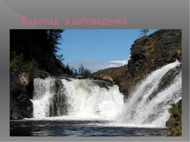 Водопад в заповеднике