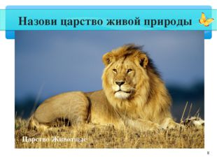 * Назови царство живой природы Царство Животные