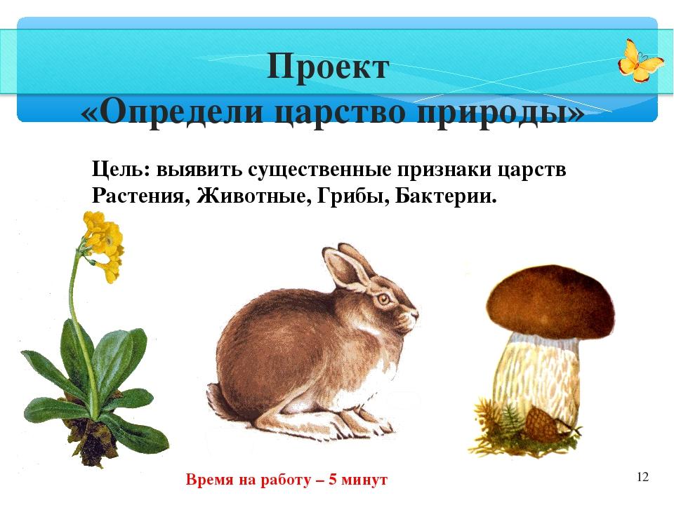 * Проект «Определи царство природы» Цель: выявить существенные признаки царст...