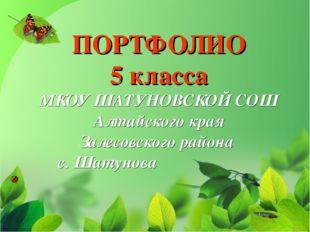 ПОРТФОЛИО 5 класса МКОУ ШАТУНОВСКОЙ СОШ Алтайского края Залесовского района