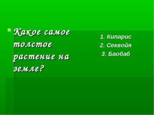 Какое самое толстое растение на земле? 1. Кипарис 2. Секвойя 3. Баобаб