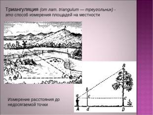 Триангуляция (от лат. triangulum — треугольник) - этоспособ измерения площад