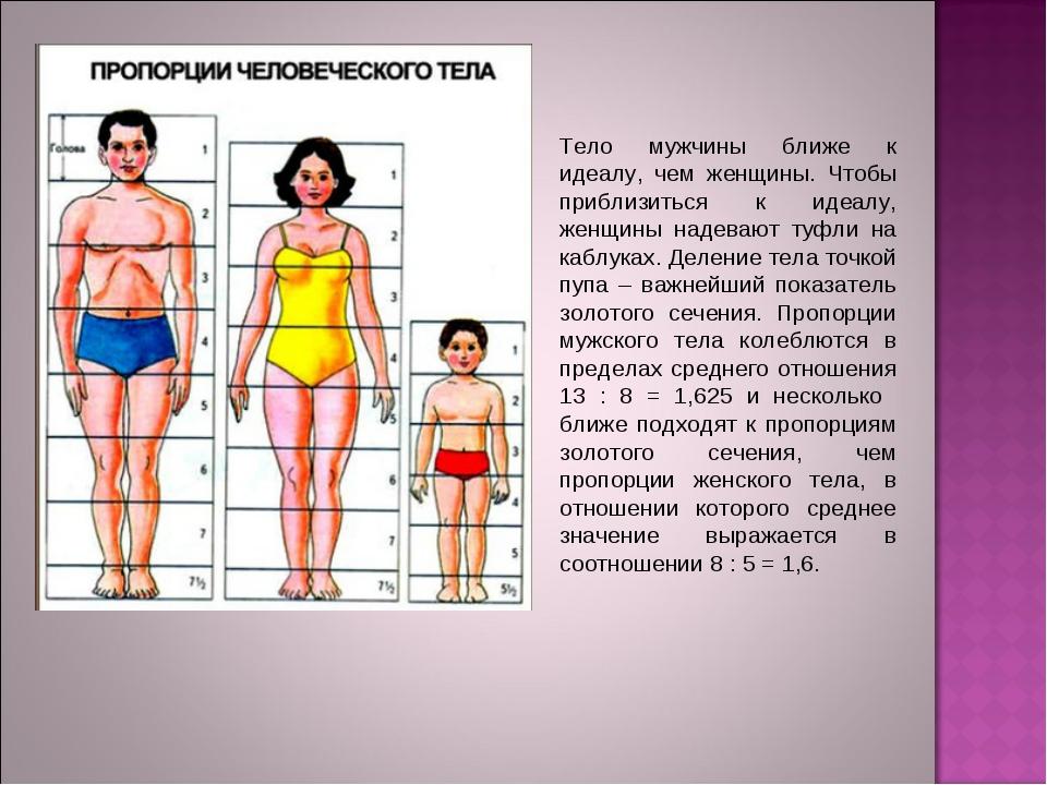 Тело мужчины ближе к идеалу, чем женщины. Чтобы приблизиться к идеалу, женщин...