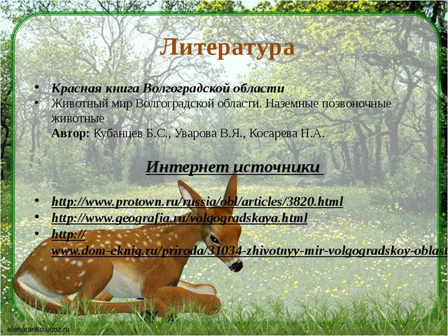 Литература Красная книга Волгоградской области Животный мир Волгоградской обл...