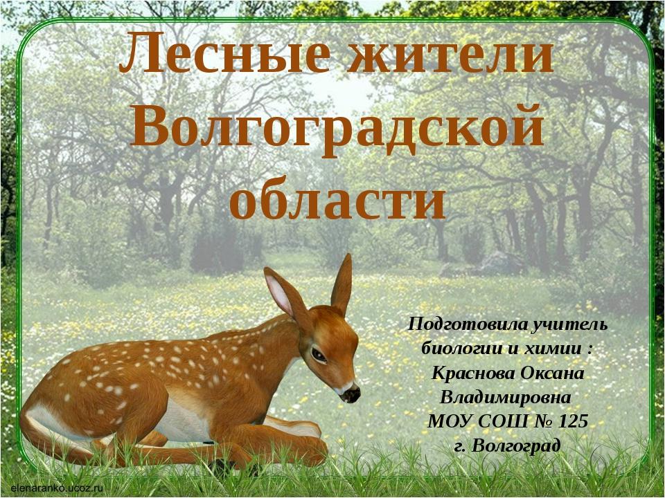 Лесные жители Волгоградской области Подготовила учитель биологии и химии : Кр...