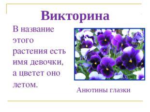 Викторина В название этого растения есть имя девочки, а цветет оно летом. Аню