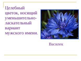 Целебный цветок, носящий уменьшительно-ласкательный вариант мужского имени. В