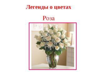Легенды о цветах Роза