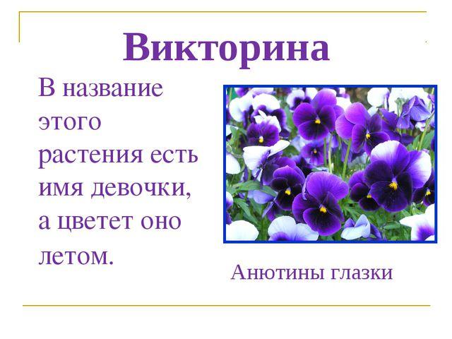 Викторина В название этого растения есть имя девочки, а цветет оно летом. Аню...