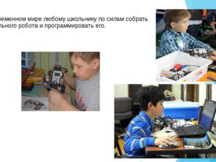 В современном мире любому школьнику по силам собрать уникального робота и про