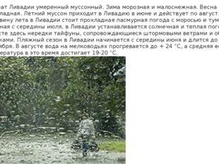 Климат Ливадии умеренный муссонный. Зима морозная и малоснежная. Весна затяжн