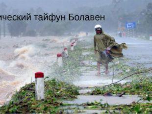 Тропический тайфун Болавен
