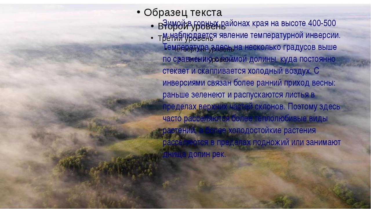 Зимой в горных районах края на высоте 400-500 м наблюдается явление температ...