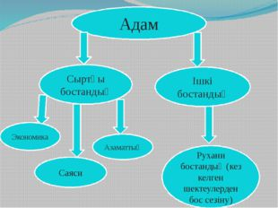 Адам Сыртқы бостандық Экономика Саяси Азаматтық Ішкі бостандық Рухани бостанд