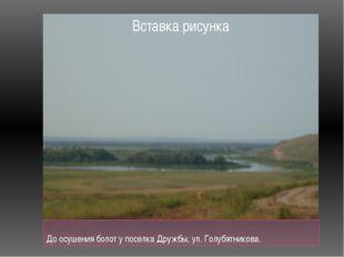 До осушения болот у поселка Дружбы, ул. Голубятникова.