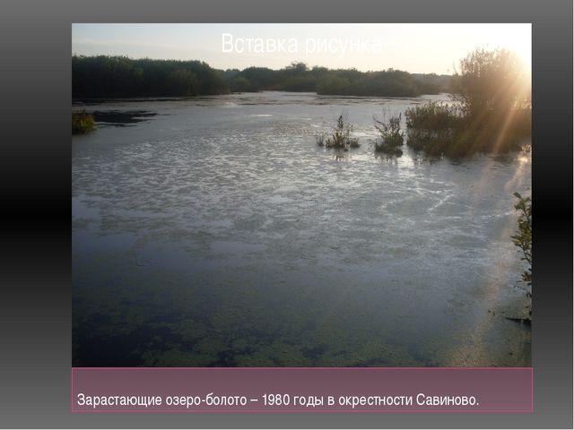 Зарастающие озеро-болото – 1980 годы в окрестности Савиново.