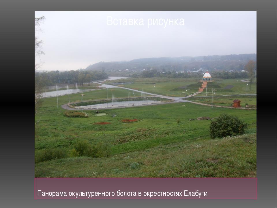 Панорама окультуренного болота в окрестностях Елабуги