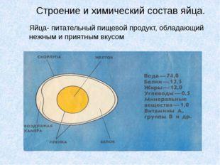 Строение и химический состав яйца. Яйца- питательный пищевой продукт, обладаю