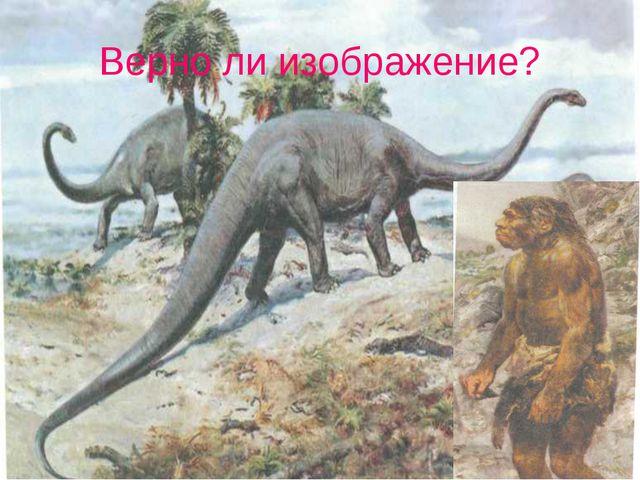 Верно ли изображение?