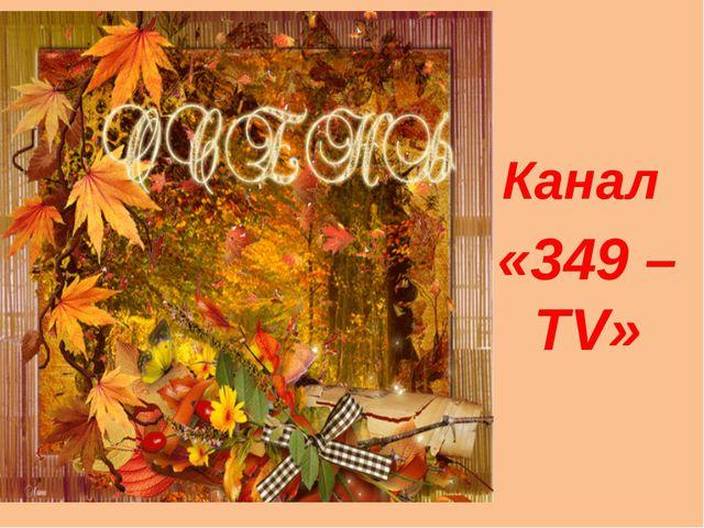Канал «349 – TV»