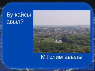 Бу нинди географик объект, ул кайсы материкта урншкан Үле Күл, Евразия