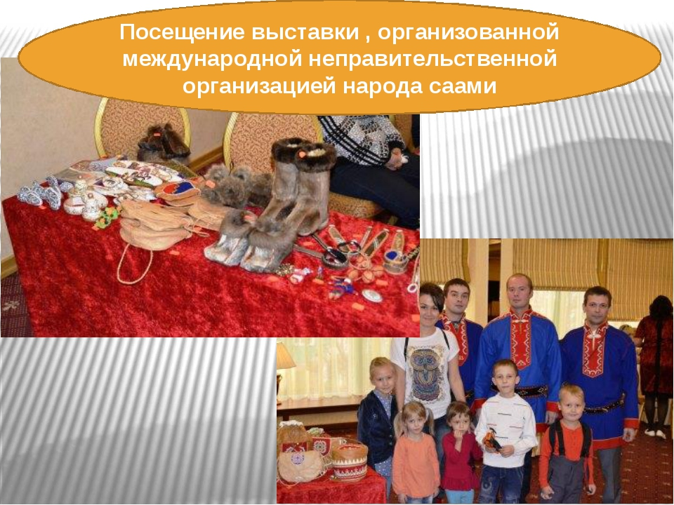 Посещение выставки , организованной международной неправительственной организ...