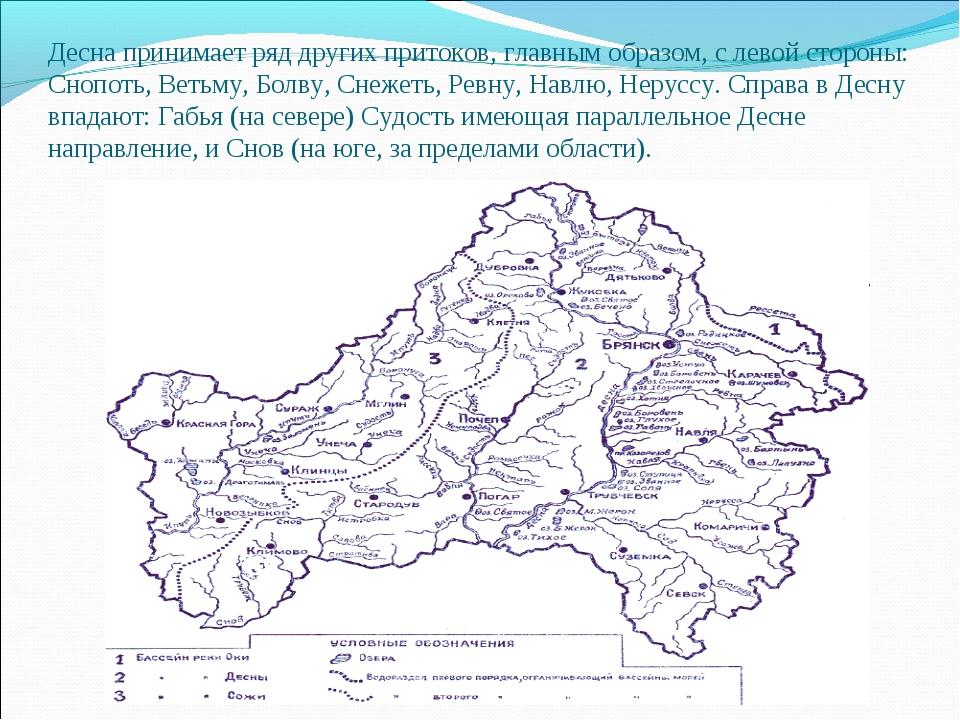 Десна принимает ряд других притоков, главным образом, с левой стороны: Снопот...