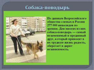По данным Всероссийского общества слепых в России 277 000 инвалидов по зрен