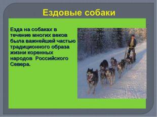 Езда на собаках в течение многих веков была важнейшей частью традиционного о
