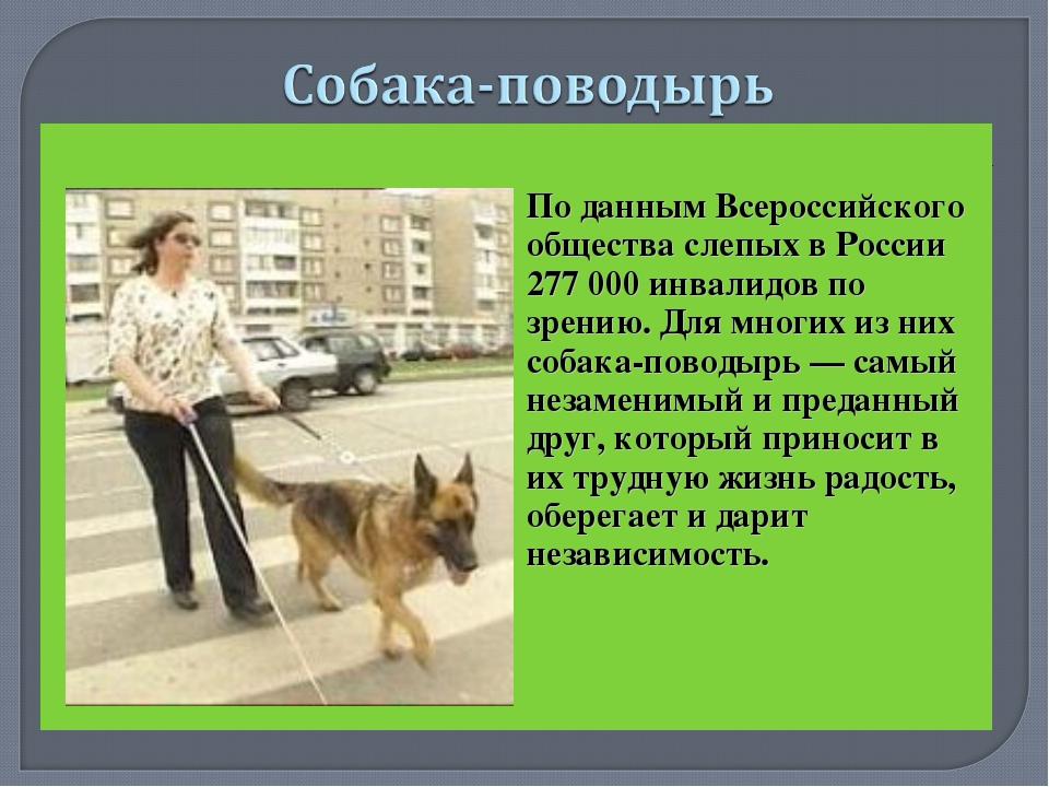 По данным Всероссийского общества слепых в России 277 000 инвалидов по зрен...
