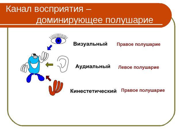 Канал восприятия – доминирующее полушарие Правое полушарие Правое полушарие Л...