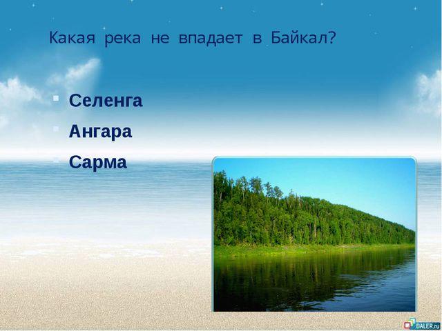 Какая река не впадает в Байкал? Селенга Ангара Сарма