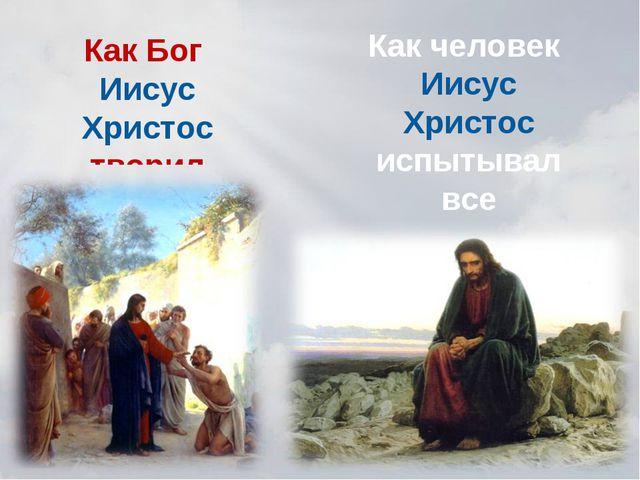 Как Бог Иисус Христос творил чудеса. Как человек Иисус Христос испытывал все...