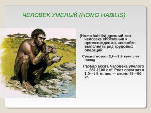 ЧЕЛОВЕК УМЕЛЫЙ (HOMO HABILIS) (Homo habilis) древний тип человека способный к