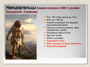 Неандертальцы (первая находка в 1856 г в долине Неандерталь (Германия) Рост 1
