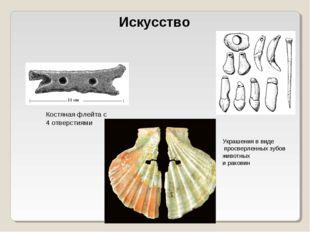 Искусство Костяная флейта с 4 отверстиями Украшения в виде просверленных зубо