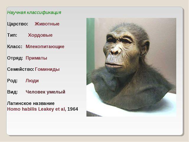 Научная классификация Царство:Животные Тип: Хордовые Класс:Млекопитающие О...