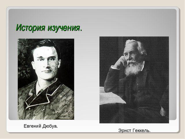 История изучения. Евгений Дюбуа. Эрнст Геккель.