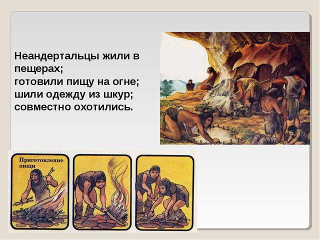 Неандертальцы жили в пещерах; готовили пищу на огне; шили одежду из шкур; сов...
