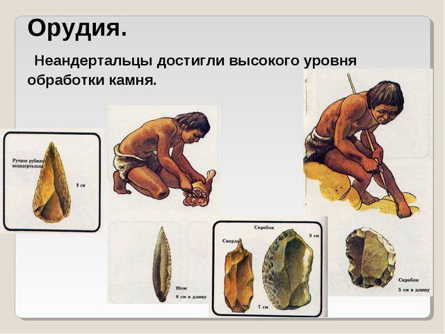 Орудия. Неандертальцы достигли высокого уровня обработки камня.