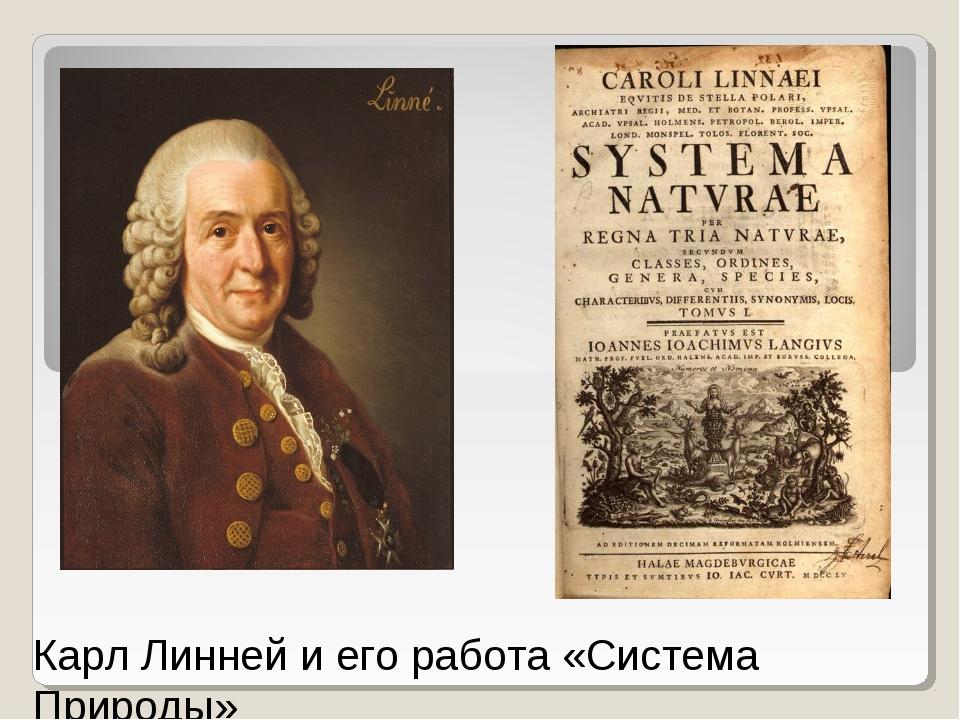 Карл Линней и его работа «Система Природы»