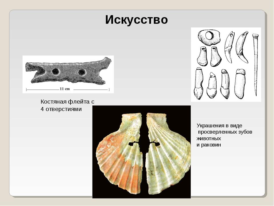 Искусство Костяная флейта с 4 отверстиями Украшения в виде просверленных зубо...